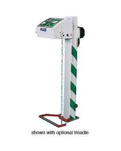 Freeze Protected Emergency Eyewash Station, Pedestal Mount, Closed ABS Bowl, Stainless Steel Pipe, 120v, C1D2