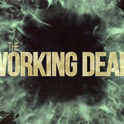 A Glimpse Into The Working Dead